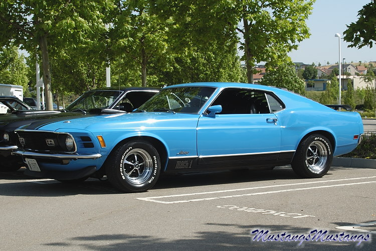 The Ford Mustang 1970 Pics MustangsMustangs