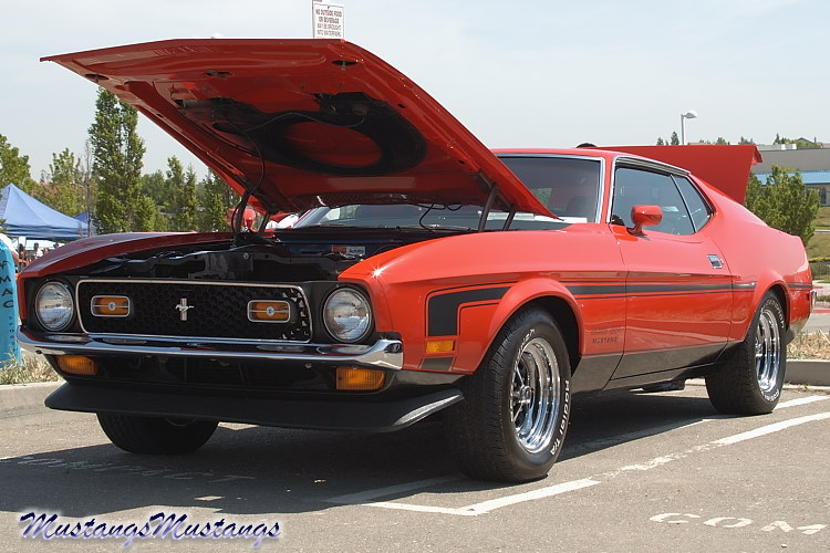 71-73 Rear Window Louvers~ - Ford Muscle Forums : Ford Muscle Cars ...