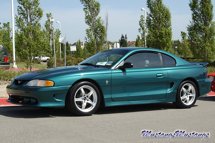 saleen mustang wallpapers. The Ford Mustang: Saleen Pics -MustangsMustangs